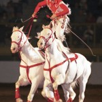 Wild West Show Trick Rider