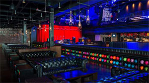 THE BROOKLYN BOWL
